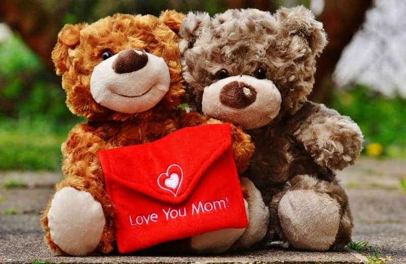 """I love you mom"" teddy bears"