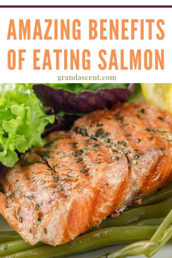Benefits of eating salmon - a delicious meal