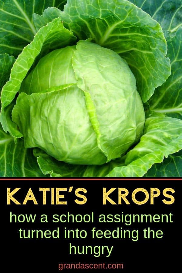 Katie's Krops - how a school assignment turned into something big.