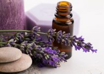 Lavender oil bottle and lavender flowers