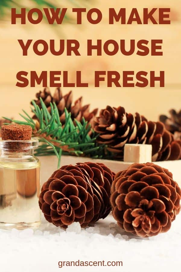 How can I make my house smell fresh naturally