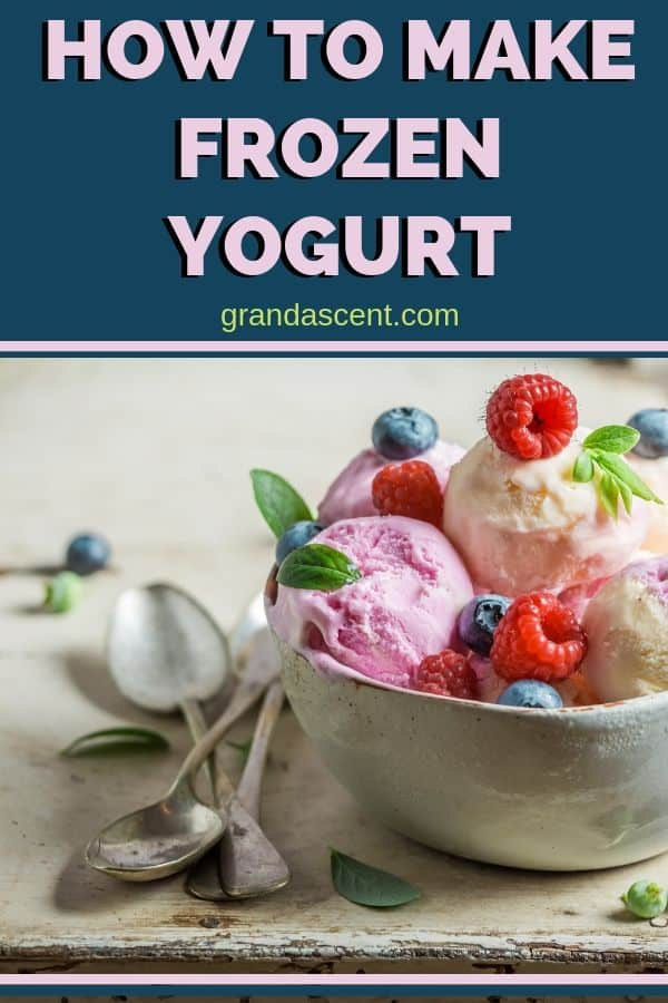 Learn how to make frozen yogurt