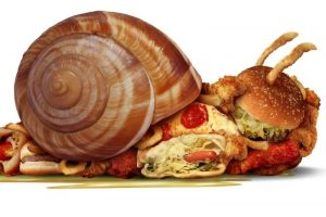 Snail filled with food to simbolize sluggishness