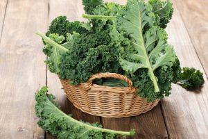 Freshly picked kale in a basket